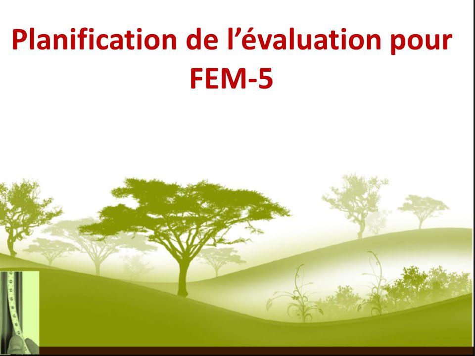 Planification de lévaluation pour FEM-5