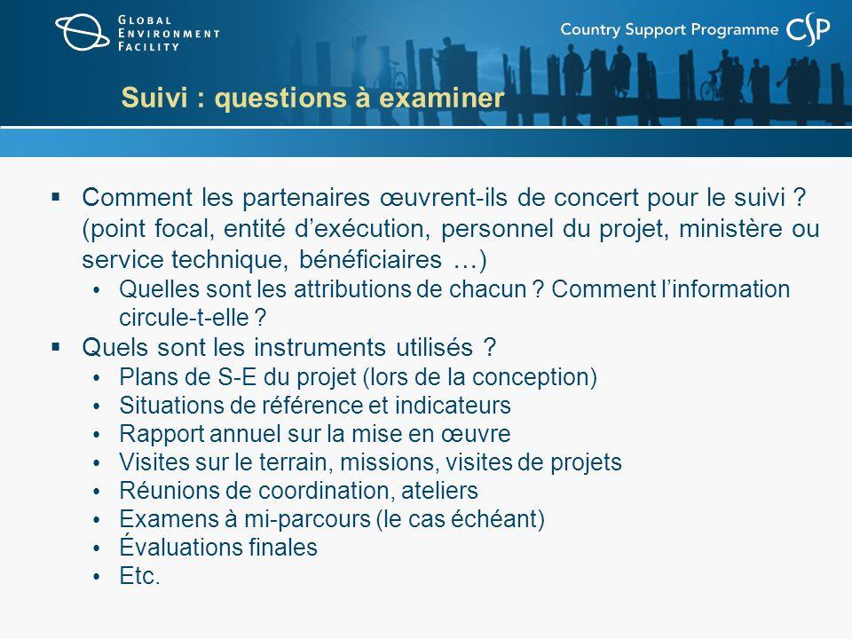 Suivi : questions à examiner Comment les partenaires œuvrent-ils de concert pour le suivi ? (point focal, entité dexécution, personnel du projet, mini