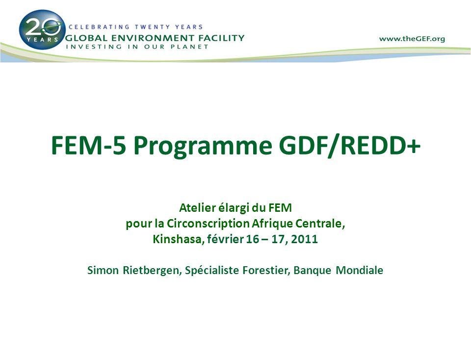 Le Programme GDF/REDD-plus du FEM-5 1.Contexte des investissements forêts du FEM 2.Stratégie du FEM-5 concernant GDF/REDD-plus 3.Mécanisme de Financement de la GDF du FEM-5 GDF/REDD-plus 4.Idées préliminaires pour le programme GDF du Bassin du Congo (Banque mondiale)