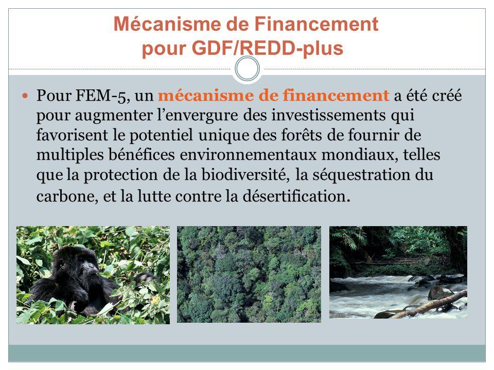 Mécanisme de Financement pour GDF/REDD-plus Pour FEM-5, un mécanisme de financement a été créé pour augmenter lenvergure des investissements qui favor