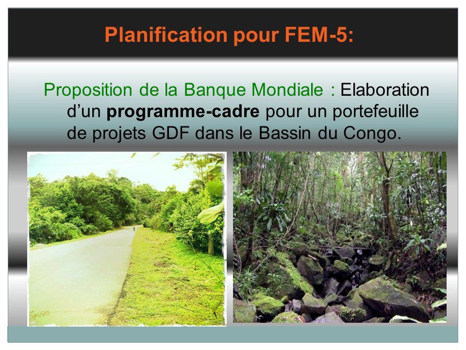 Planification pour FEM-5: Proposition de la Banque Mondiale : Elaboration dun programme-cadre pour un portefeuille de projets GDF dans le Bassin du Co