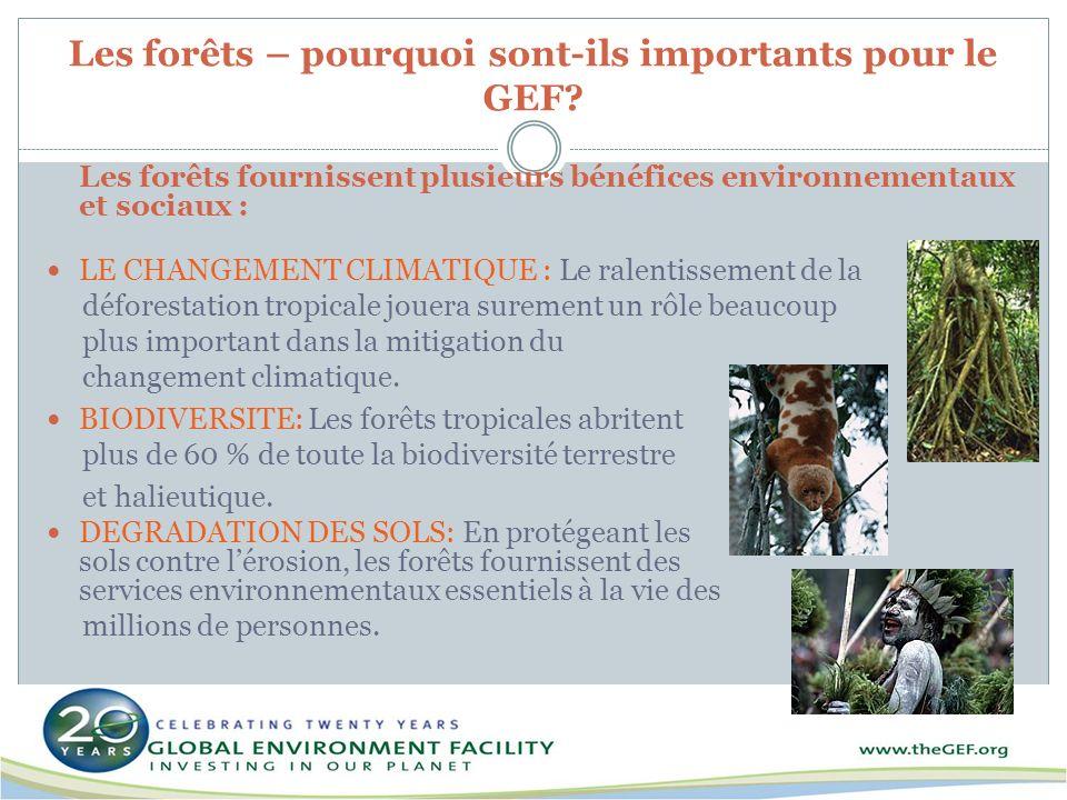 Les forêts – pourquoi sont-ils importants pour le GEF? Les forêts fournissent plusieurs bénéfices environnementaux et sociaux : LE CHANGEMENT CLIMATIQ
