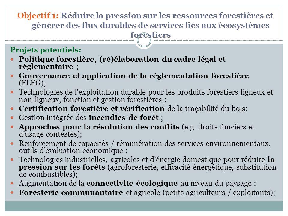 Idees pour projets sous le Programme-cadre GDF : République démocratique du Congo : Capitalisation dun Fonds Fiduciaire pour la Conservation et la Planification des Aires Protegees (avec co-financement potentiel de lAllemagne, de la Belgique) Gestion durable des forets pour la production des combustibles ligneux, combinee avec transformation efficace en charbon de bois (avec co-financement du Program dInvestissement Forestier - FIP) Cameroun: Gestion des Aires Protegees (avec co-financement WB/IDA) Integration des objectifs de conservation dans les operations minieres (avec co-financement potentiel WB/IDA)