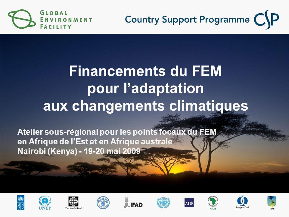 2 Le FEM et ladaptation : aperçu général Quatre sources de financement pour ladaptation offertes par le FEM Aide du FEM pour l adaptation Caisse du FEM Priorité stratégique Adaptation (PSA) Actions dadaptation AVEC AVANTAGES MONDIAUX Fonds des pays les moins avancés (FPMA) (mise en œuvre des PANA) PAS DAVANTAGES MONDIAUX Fonds spécial pour les changements climatiques (FSCC) Première priorité pour ladaptation PAS DAVANTAGES MONDIAUX Total : 50 M$ Total : 180 M$ Total : 100 M$ Fonds dadaptation (FA) Adaptation dans les pays en développement parties PAS DAVANTAGES MONDIAUX Caisse du FEM Fonds de la CCNUCC pour les changements climatiques Fonds dadaptation du Protocole de Kyoto Estimation : 80-300 M$ / an