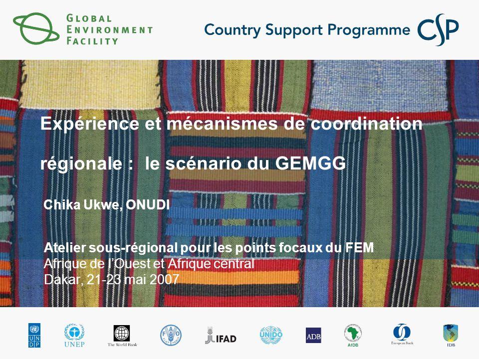Expérience et mécanismes de coordination régionale : le scénario du GEMGG Chika Ukwe, ONUDI Atelier sous-régional pour les points focaux du FEM Afrique de lOuest et Afrique central Dakar, 21-23 mai 2007