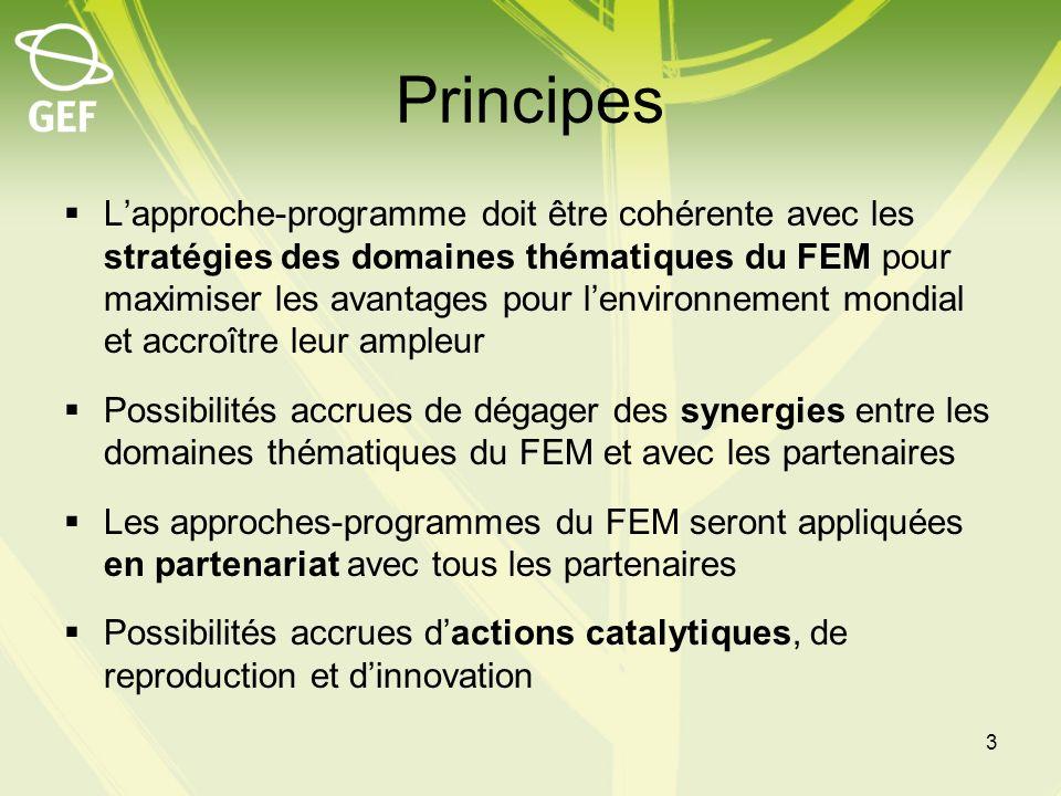 Principes Lapproche-programme doit être cohérente avec les stratégies des domaines thématiques du FEM pour maximiser les avantages pour lenvironnement