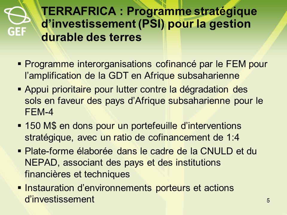 Aperçu du PSI 40 projets associant 25 pays, comprenant : –Des projets spécifiques des pays –Des projets régionaux multipays –Des interventions régionales transfrontières axées sur des écosystèmes spécifiques > 800 millions de dollars en cofinancements fournis par une large gamme de donateurs Types dinvestissements : Politiques et cadres dinvestissement pour la GDT, Système de gestion des connaissances et dappui aux décisions pour la GDT, investissement direct dans les interventions de GDT, renforcement du rôle des organisations de la société civile dans la GDT 6