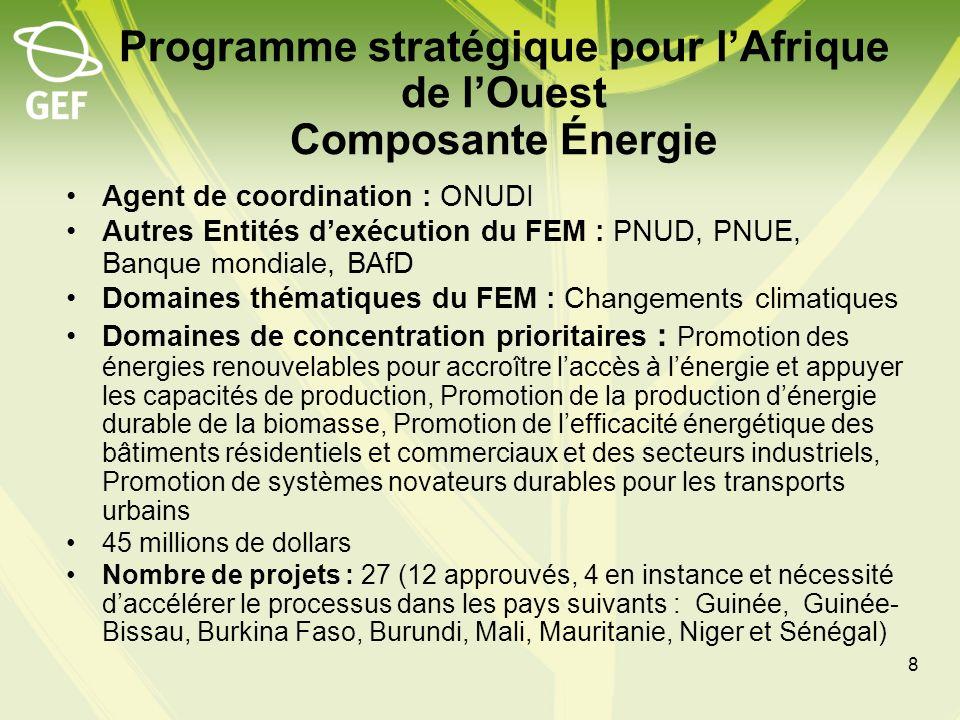 Programme stratégique pour la gestion forestière durable dans le bassin du Congo PAYS : Cameroun, Gabon, Guinée équatoriale, République centrafricaine, République du Congo, République démocratique du Congo, Agent de coordination du FEM : Banque mondiale Autres Entités dexécution du FEM : PNUD, PNUE, FAO, BAfD 49,75 millions de dollars des domaines de la biodiversité et des changements climatiques (pour le REDD); cofinancement : 1:3 Objectifs du programme : 1) conservation de zones clés de biodiversité par le renforcement du réseau régional daires protégées, 2) gestion et utilisation durables des ressources naturelles dans le paysage de production, 3) renforcement du cadre institutionnel et du cadre de financement durable pour la gestion des écosystèmes.
