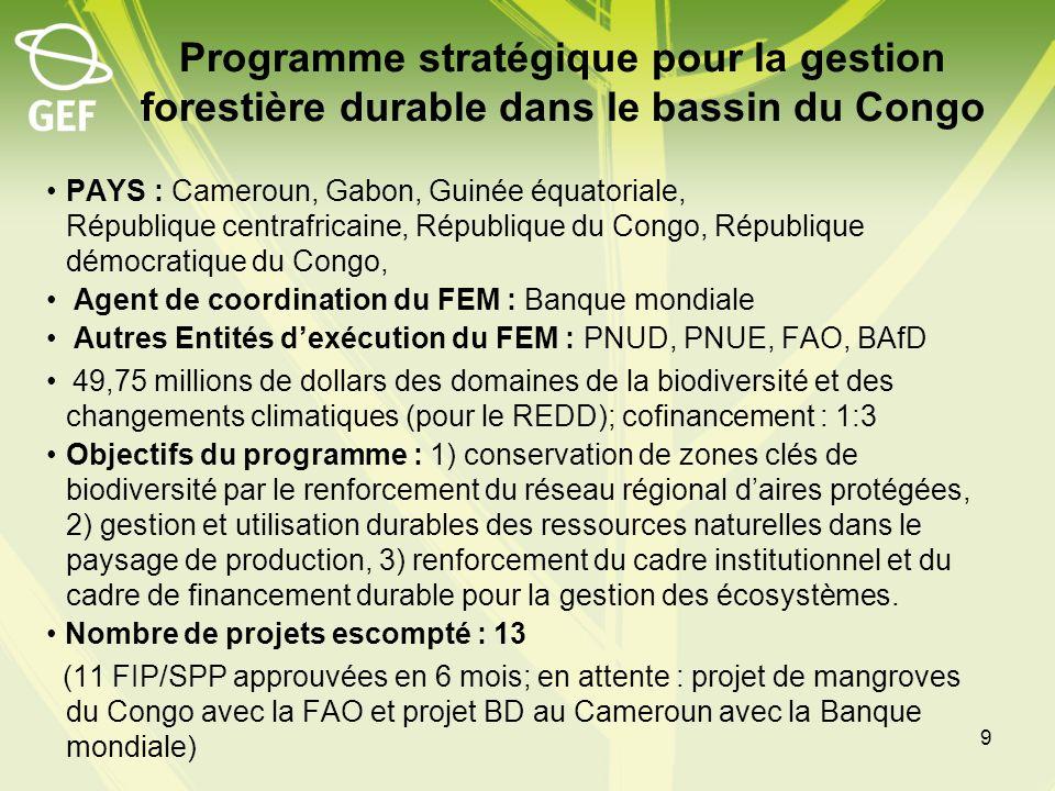 Programme stratégique pour la gestion forestière durable dans le bassin du Congo PAYS : Cameroun, Gabon, Guinée équatoriale, République centrafricaine