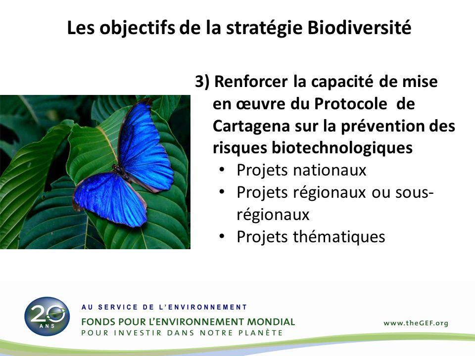 3) Renforcer la capacité de mise en œuvre du Protocole de Cartagena sur la prévention des risques biotechnologiques Projets nationaux Projets régionaux ou sous- régionaux Projets thématiques Les objectifs de la stratégie Biodiversité