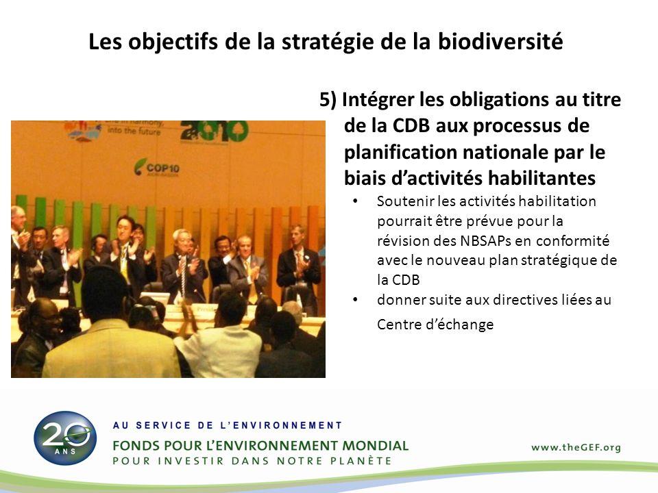 5) Intégrer les obligations au titre de la CDB aux processus de planification nationale par le biais dactivités habilitantes Soutenir les activités habilitation pourrait être prévue pour la révision des NBSAPs en conformité avec le nouveau plan stratégique de la CDB donner suite aux directives liées au Centre déchange Les objectifs de la stratégie de la biodiversité