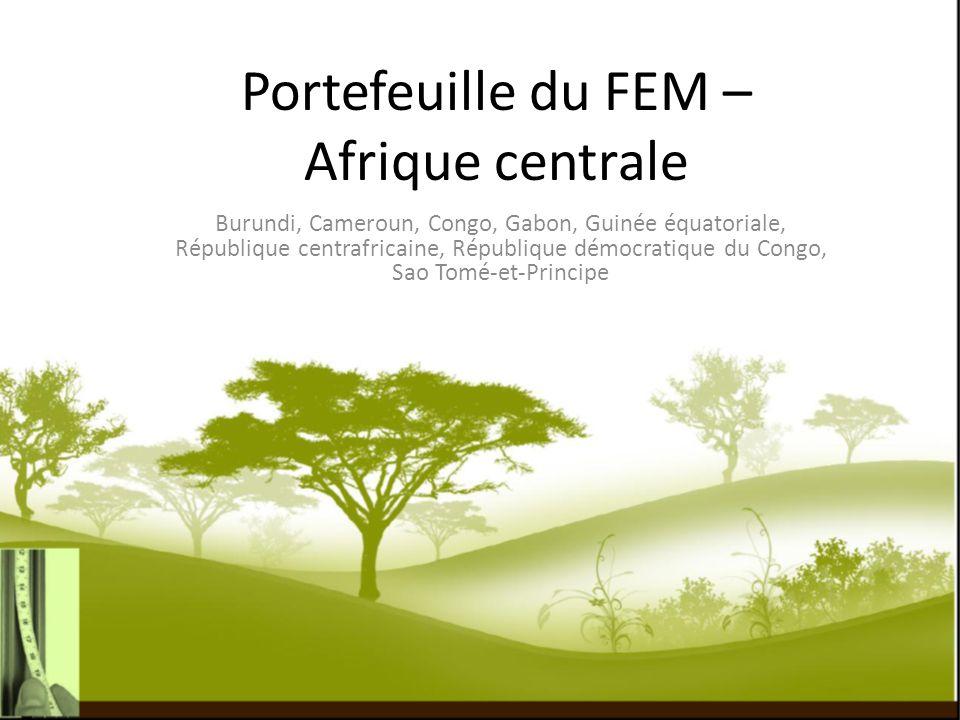 Portefeuille du FEM – Afrique centrale Burundi, Cameroun, Congo, Gabon, Guinée équatoriale, République centrafricaine, République démocratique du Cong