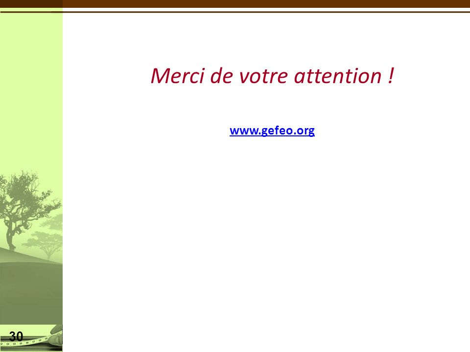 Merci de votre attention ! www.gefeo.org 30