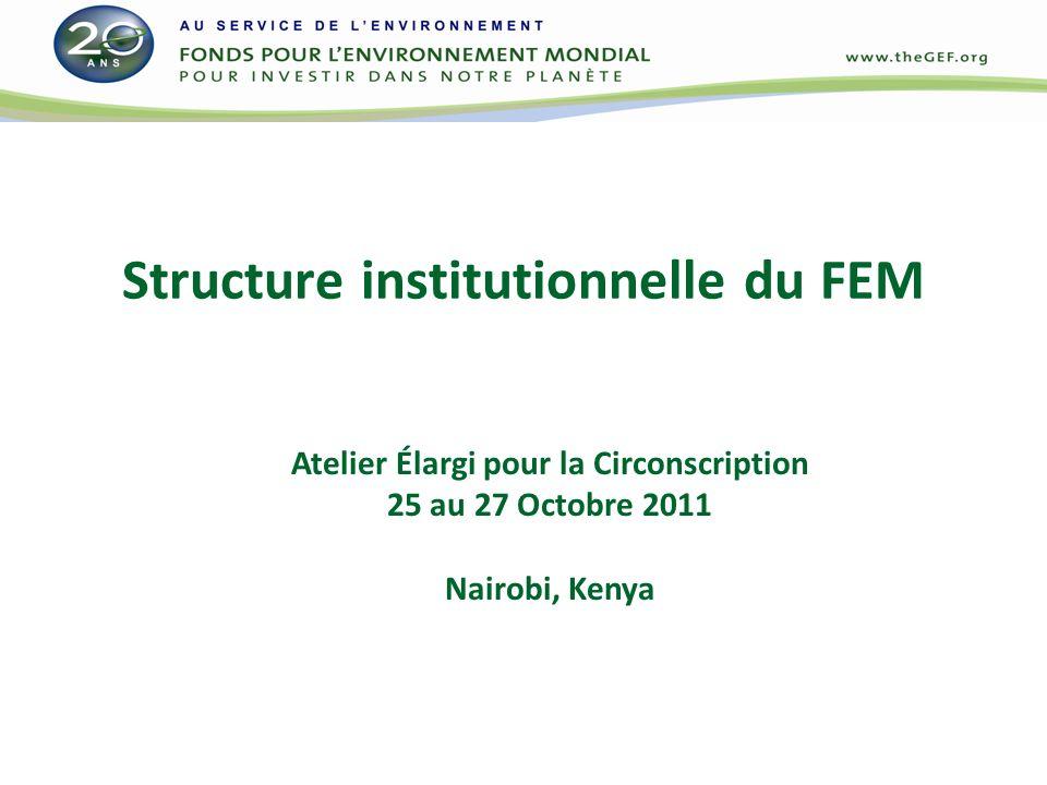 Cadre institutionnel du FEM