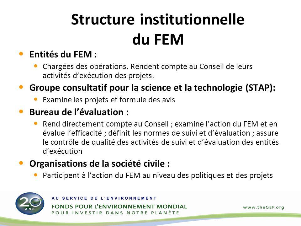 Structure institutionnelle du FEM Entités du FEM : Chargées des opérations.