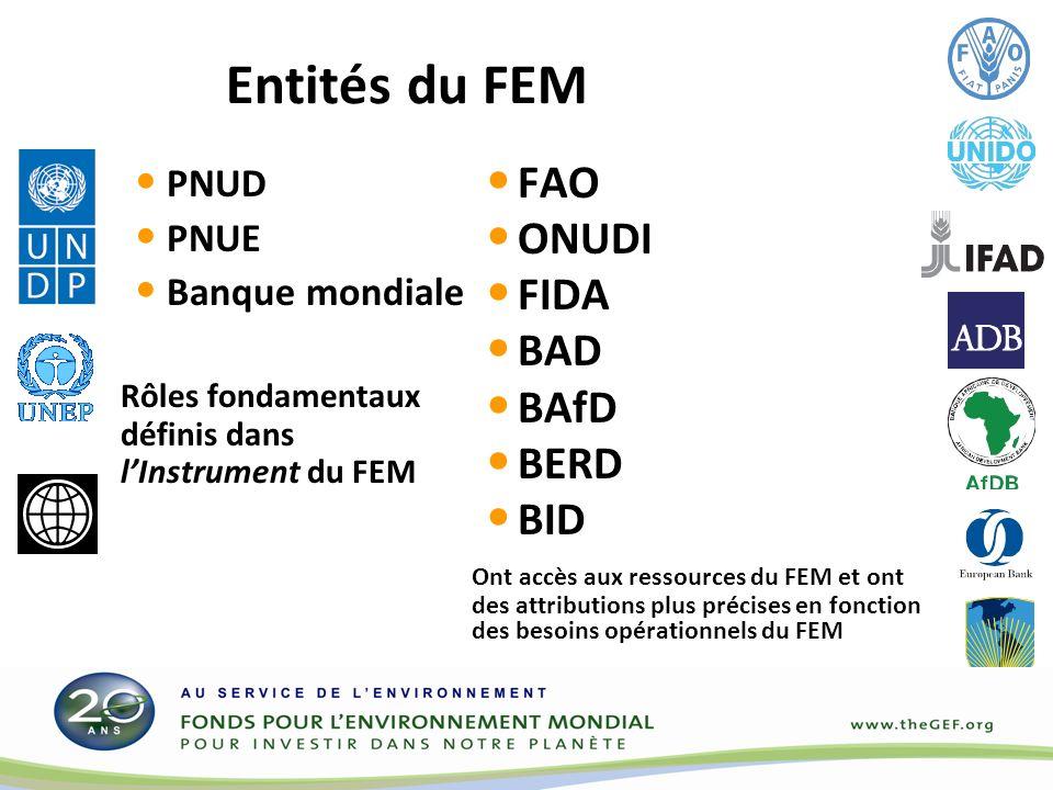 Entités du FEM PNUD PNUE Banque mondiale Rôles fondamentaux définis dans lInstrument du FEM FAO ONUDI FIDA BAD BAfD BERD BID Ont accès aux ressources du FEM et ont des attributions plus précises en fonction des besoins opérationnels du FEM