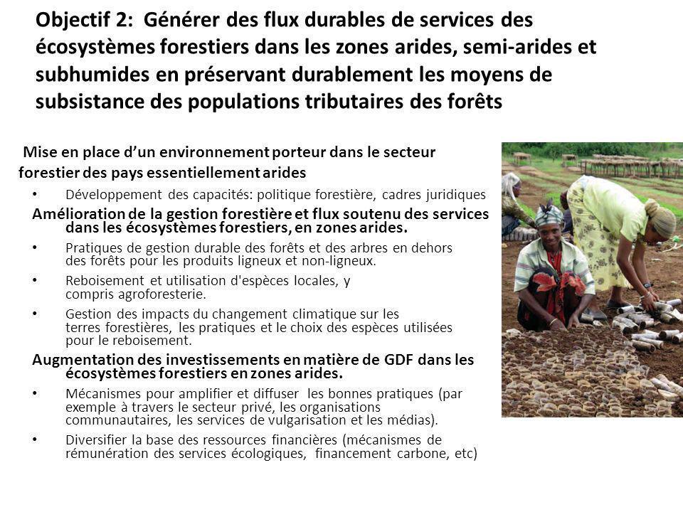 Objectif 3: Réduire les pressions exercées sur les ressources naturelles du fait de la compétition entre les usages des sols à léchelle des paysages Amélioration de lenvironnement porteur multisectoriel pour la gestion intégrée des paysages Développement des capacités pour améliorer les systèmes de décision dans la gestion des paysages de production Développement des politiques Adoption des pratiques de gestion intégrée du paysage par les populations locales Améliorer la gestion des activités agricoles à proximité des aires protégées Gestion intégrée des bassins versants, y compris les zones transfrontalières où les interventions de GDS peuvent améliorer les fonctions et les services hydrologiques pour la productivité des agro-écosystèmes (cultures et élevage).