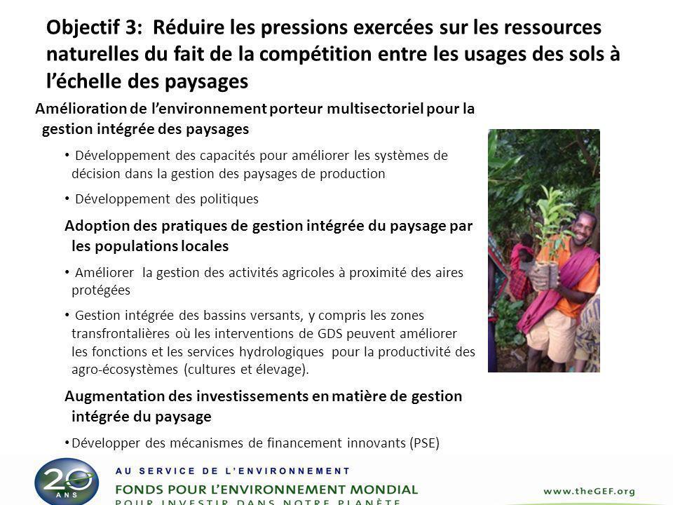 Objectif 4 Dégradation des Sols Objectif 4: Renforcer les capacités à appliquer les outils de gestion évolutive à la gestion durable des sols (GDS).