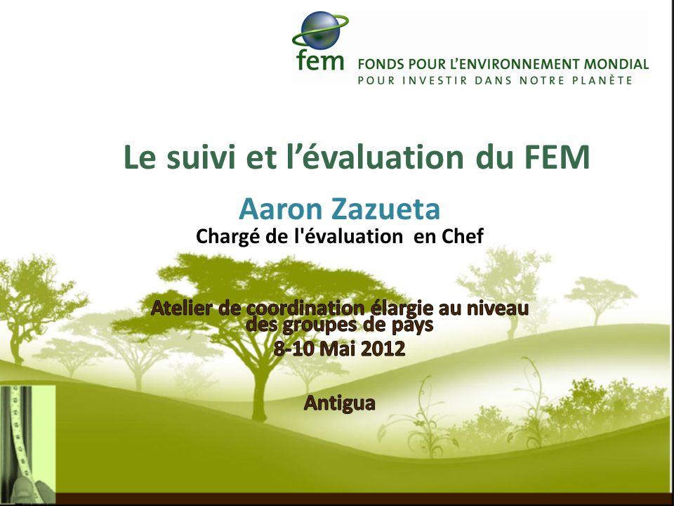 Évaluer dans quelle mesure le FEM atteint ses objectifs : tels quénoncés dans linstrument du FEM et les examens par lAssemblée tels quélaborés et adoptés par le Conseil du FEM dans les politiques opérationnelles et les programmes dactivités financées par le FEM et identifier les améliorations potentielles 12