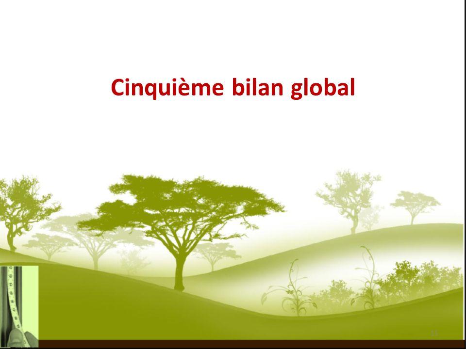 Cinquième bilan global 11