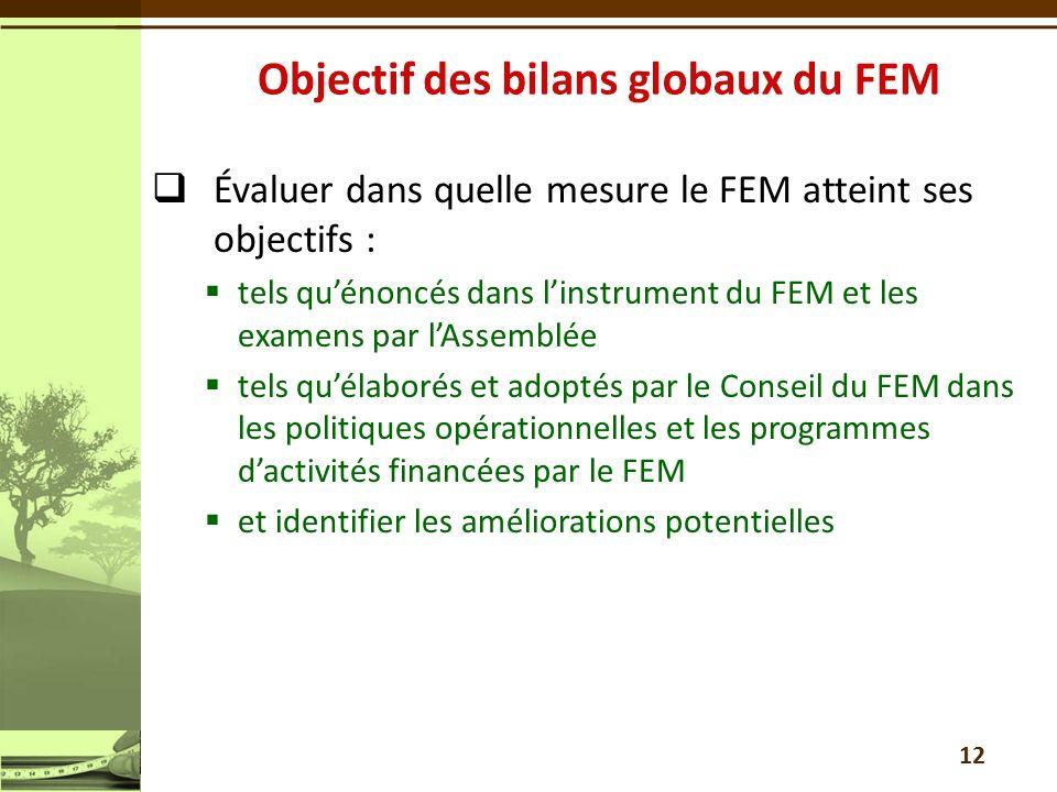 Évaluer dans quelle mesure le FEM atteint ses objectifs : tels quénoncés dans linstrument du FEM et les examens par lAssemblée tels quélaborés et adop