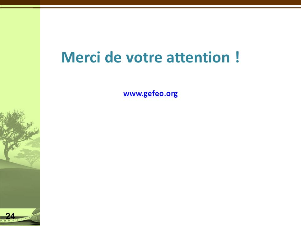 Merci de votre attention ! www.gefeo.org 24