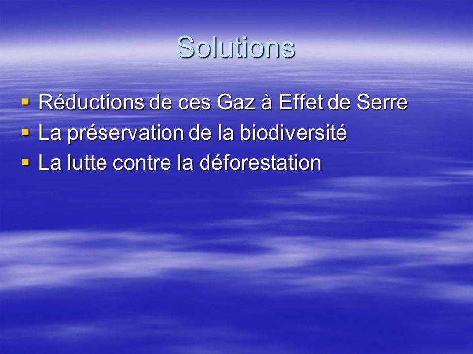 Solutions Réductions de ces Gaz à Effet de Serre Réductions de ces Gaz à Effet de Serre La préservation de la biodiversité La préservation de la biodi