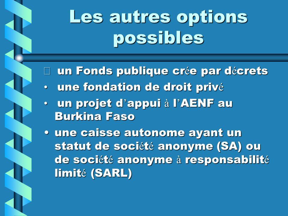 Les autres options possibles un Fonds publique cr é e par d é crets un Fonds publique cr é e par d é crets une fondation de droit priv é une fondation
