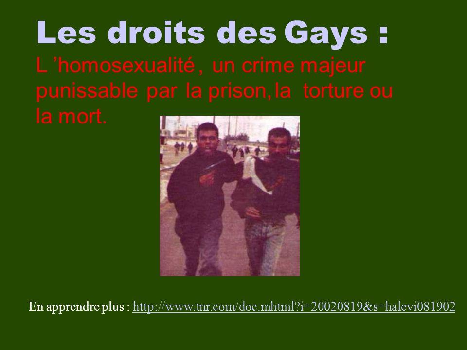 En apprendre plus : http://www.tnr.com/doc.mhtml i=20020819&s=halevi081902http://www.tnr.com/doc.mhtml i=20020819&s=halevi081902 Les droits des Gays : L homosexualité, un crime majeur punissable par la prison, la torture ou la mort.