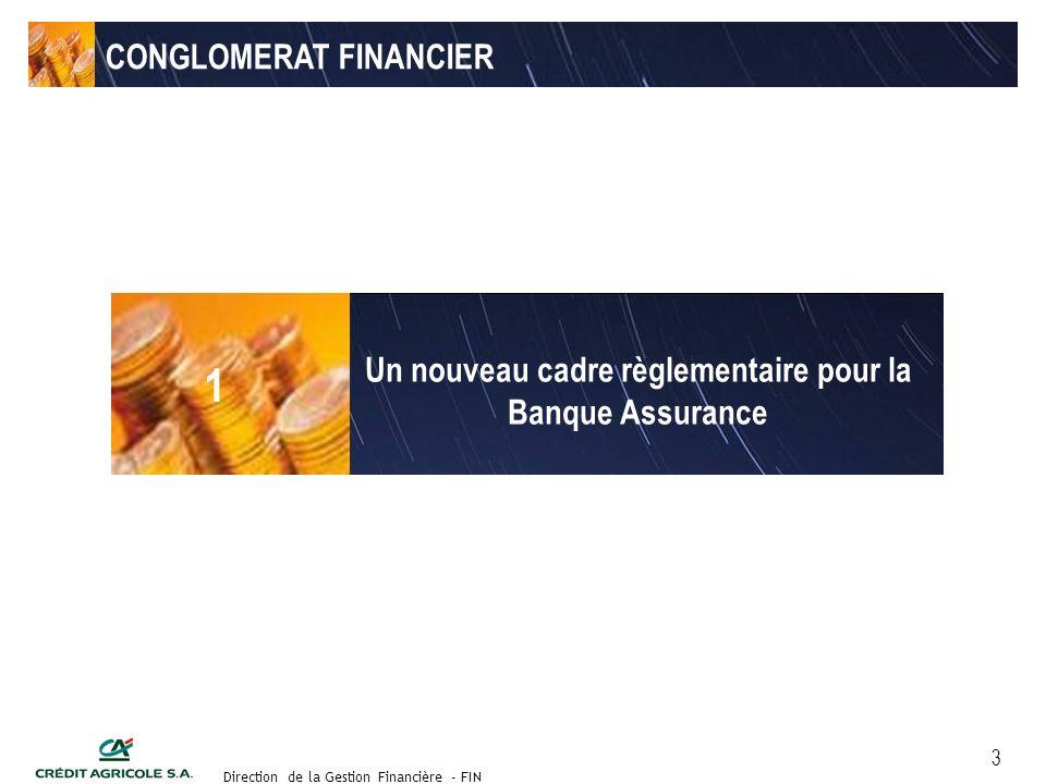 Groupe de travail des Directeurs Financiers du 11 septembre 2003 Direction de la Gestion Financière - FIN 3 CONGLOMERAT FINANCIER Un nouveau cadre règlementaire pour la Banque Assurance 1