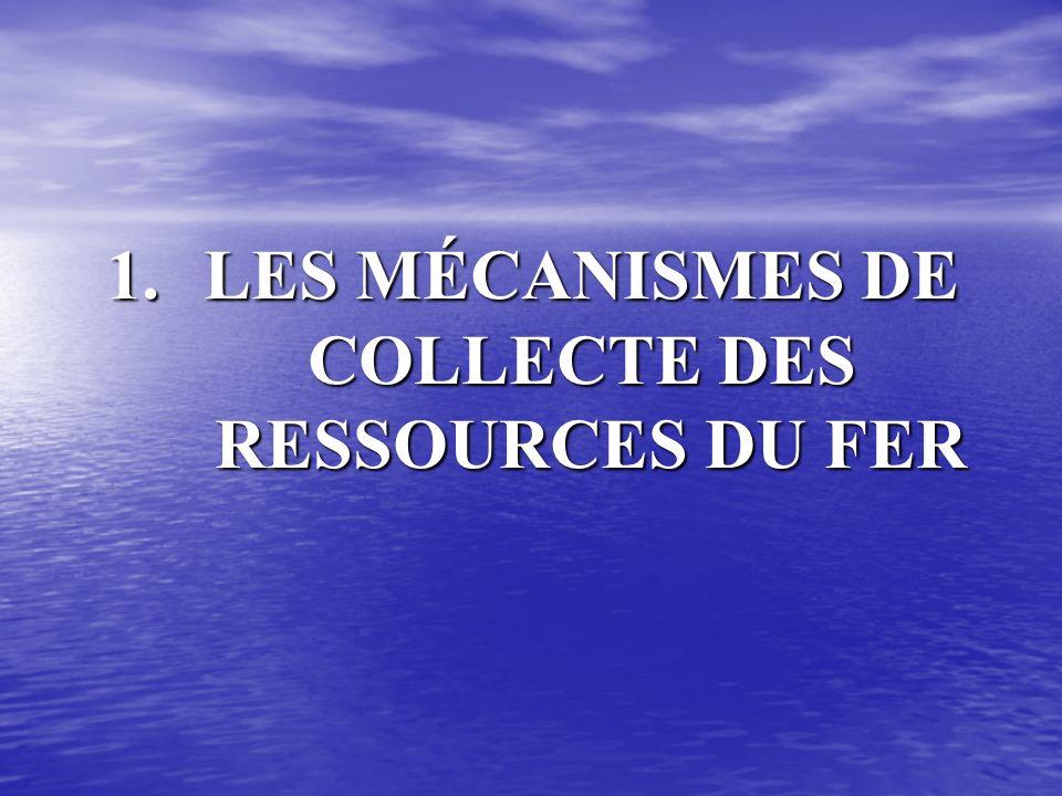 1.LES MÉCANISMES DE COLLECTE DES RESSOURCES DU FER