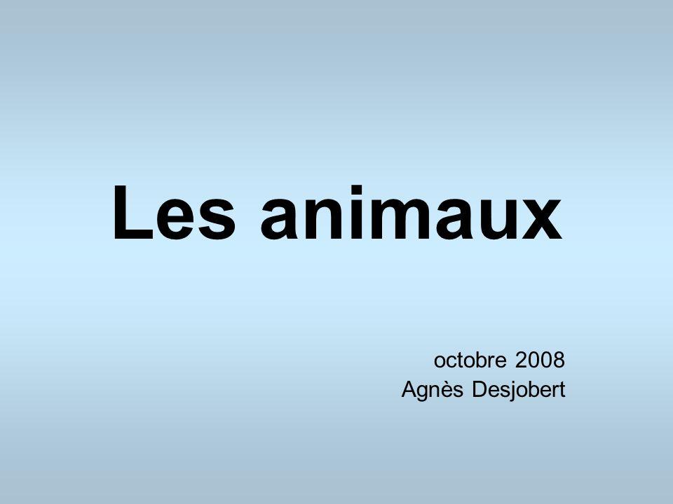 Les animaux octobre 2008 Agnès Desjobert