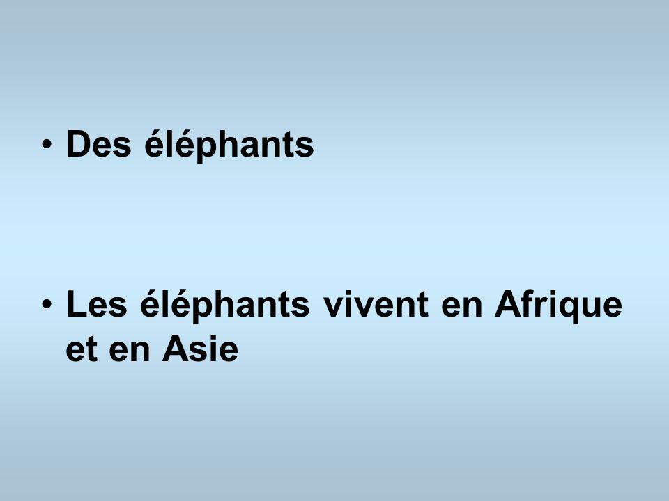 Des éléphants Les éléphants vivent en Afrique et en Asie