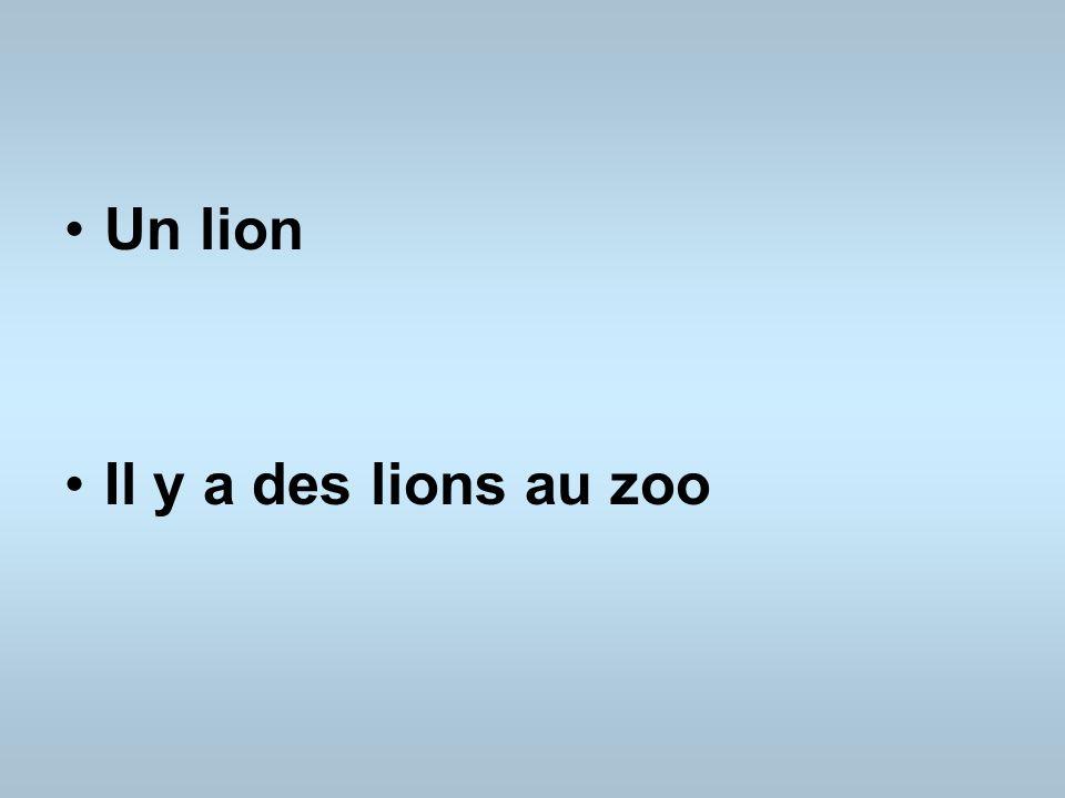 Un lion Il y a des lions au zoo