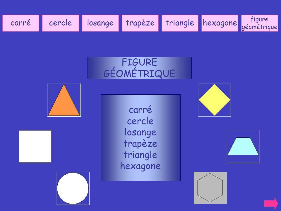 carrécerclelosangetrapèzetrianglehexagone carré cercle losange trapèze triangle hexagone FIGURE GÉOMÉTRIQUE figure géométrique