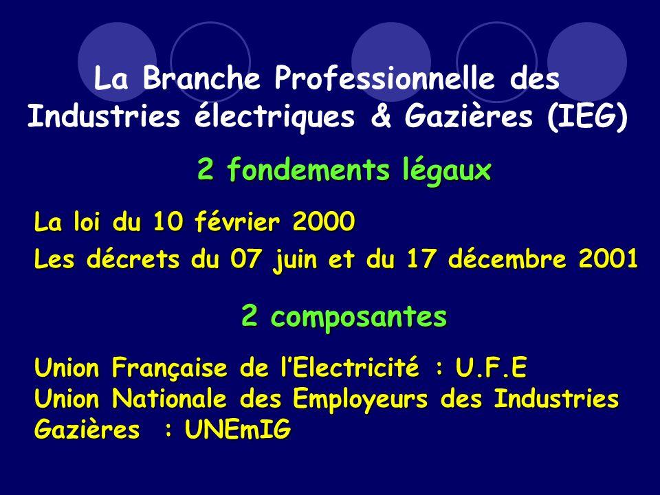 2 fondements légaux La loi du 10 février 2000 Les décrets du 07 juin et du 17 décembre 2001 2 composantes Union Française de lElectricité : U.F.E Union Nationale des Employeurs des Industries Gazières : UNEmIG La Branche Professionnelle des Industries électriques & Gazières (IEG)