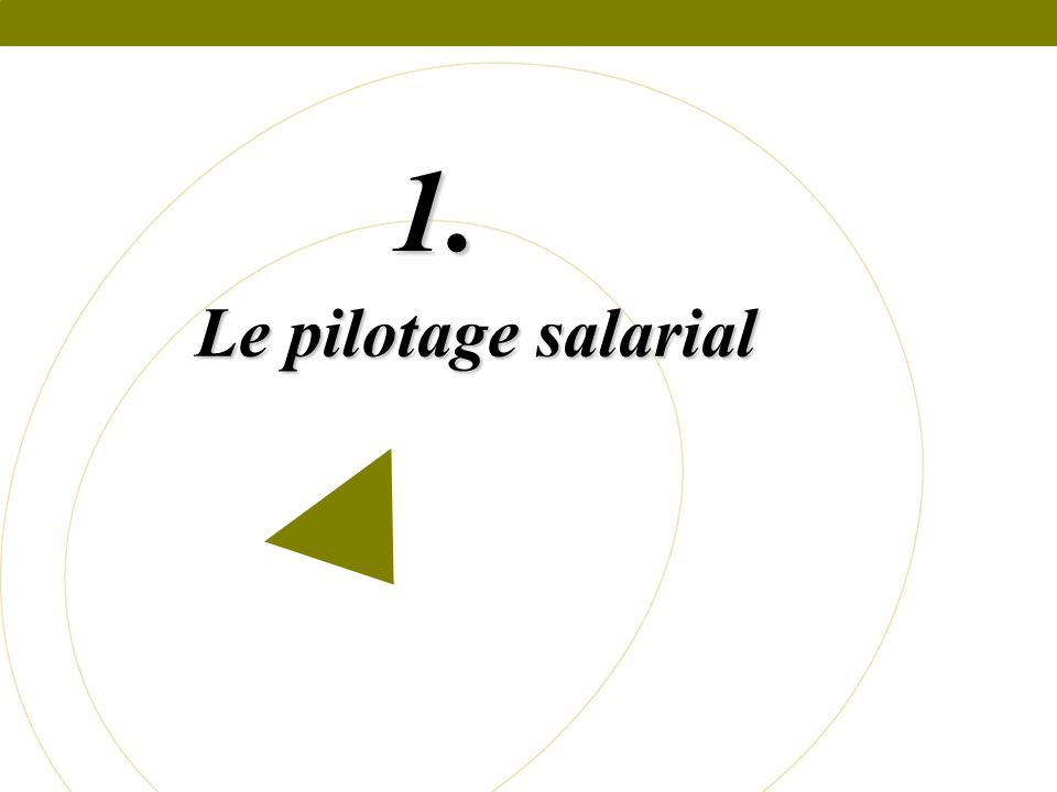 Le pilotage salarial 1.
