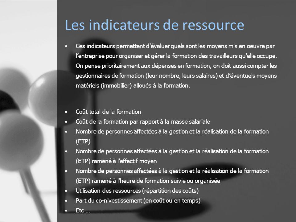 Les indicateurs de ressource Ces indicateurs permettent dévaluer quels sont les moyens mis en oeuvre par lentreprise pour organiser et gérer la formation des travailleurs quelle occupe.