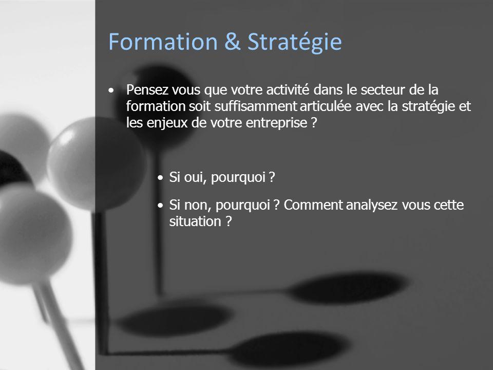 Formation & Stratégie Pensez vous que votre activité dans le secteur de la formation soit suffisamment articulée avec la stratégie et les enjeux de votre entreprise .