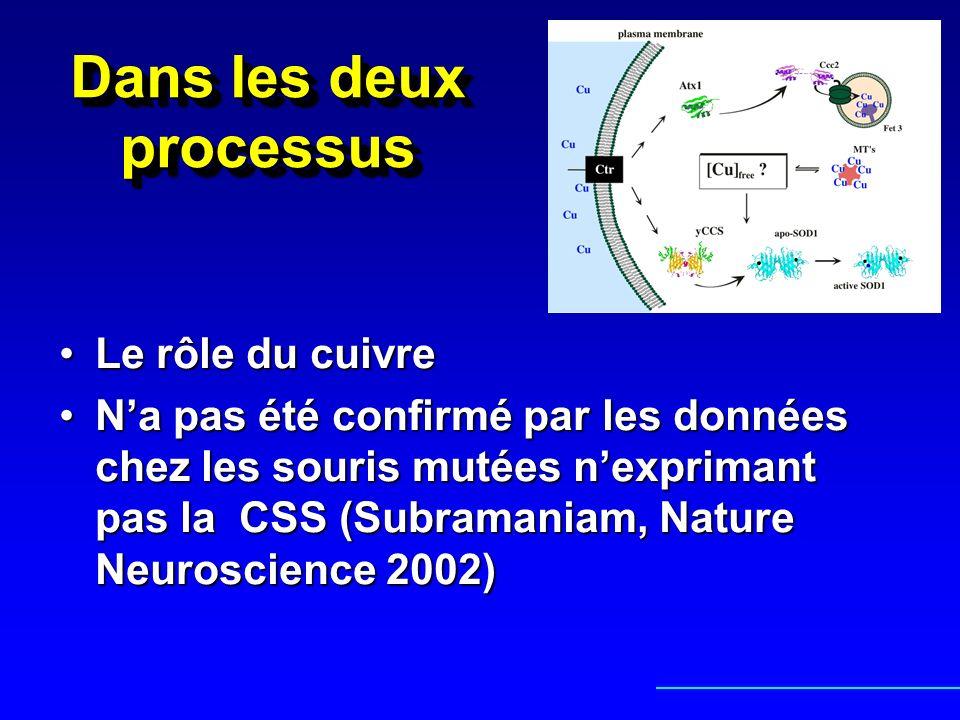 Dans les deux processus Le rôle du cuivreLe rôle du cuivre Na pas été confirmé par les données chez les souris mutées nexprimant pas la CSS (Subramani