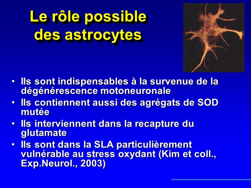 Le rôle possible des astrocytes Ils sont indispensables à la survenue de la dégénérescence motoneuronaleIls sont indispensables à la survenue de la dé