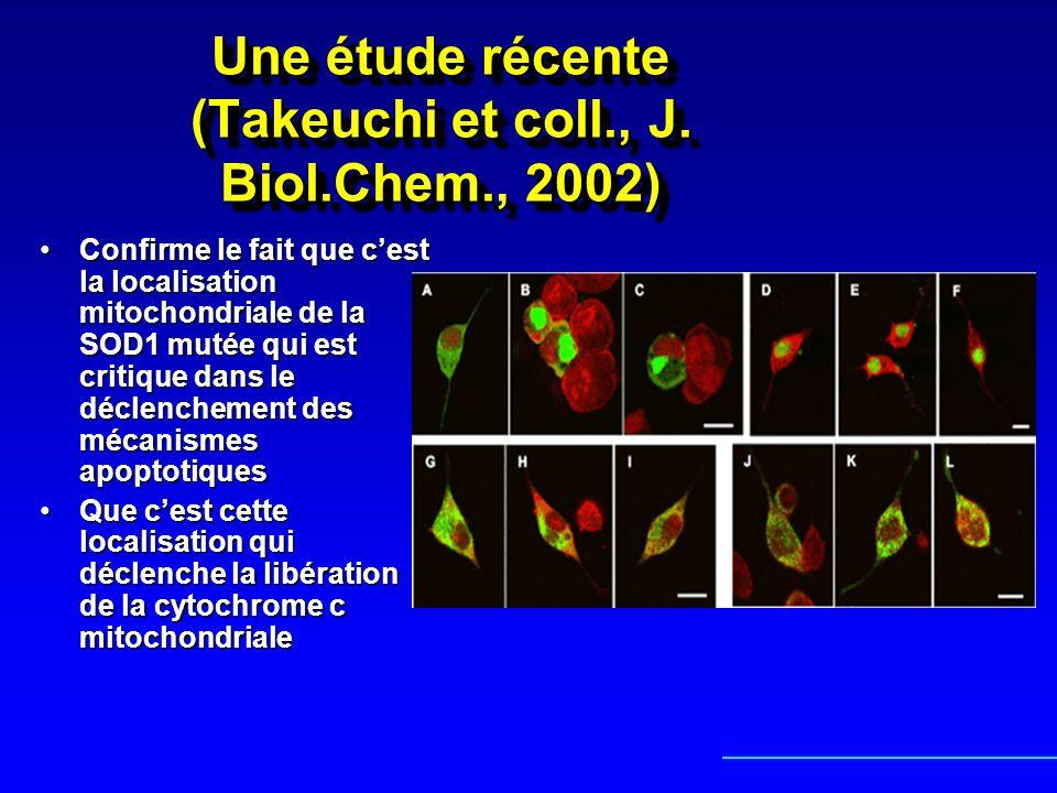 Une étude récente (Takeuchi et coll., J. Biol.Chem., 2002) Confirme le fait que cest la localisation mitochondriale de la SOD1 mutée qui est critique