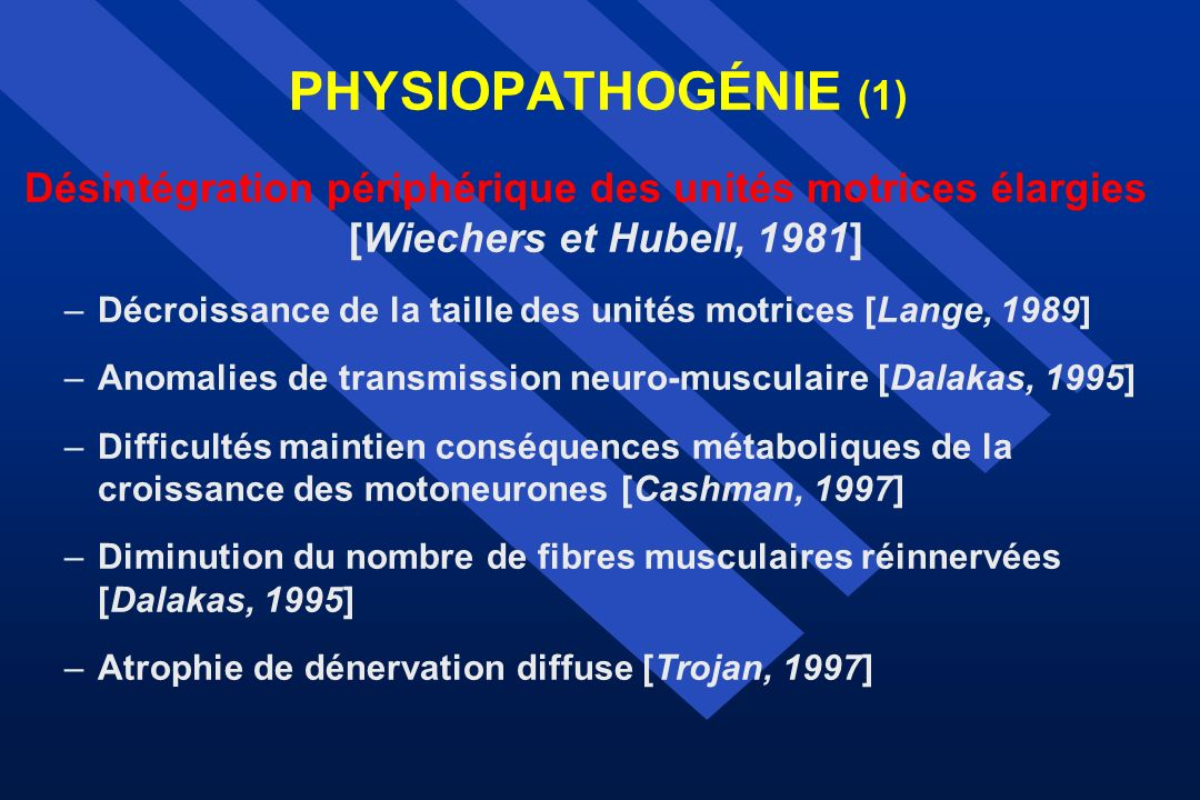 PHYSIOPATHOGÉNIE (1) Désintégration périphérique des unités motrices élargies [Wiechers et Hubell, 1981] –Décroissance de la taille des unités motrice