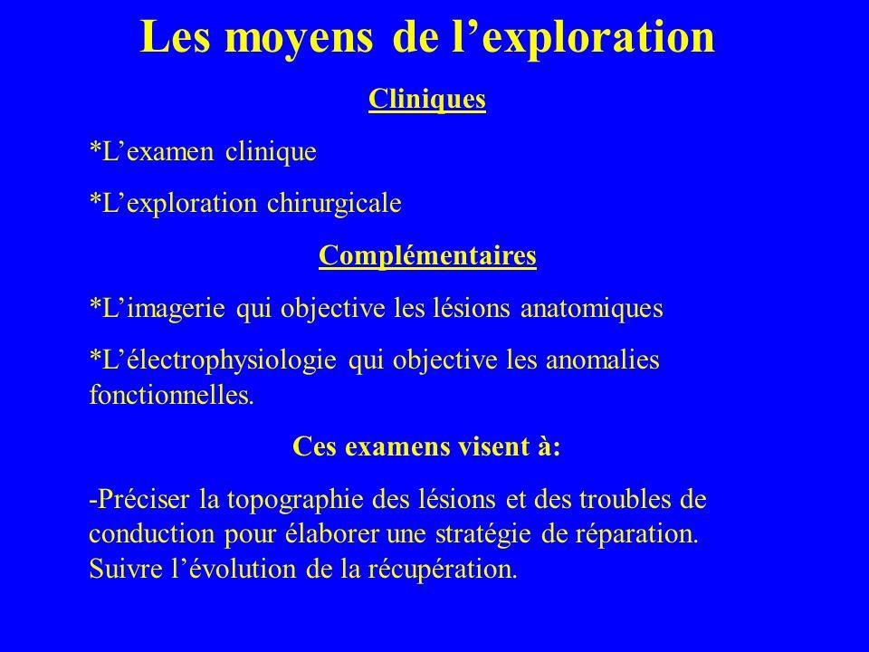 Les moyens de lexploration Cliniques *Lexamen clinique *Lexploration chirurgicale Complémentaires *Limagerie qui objective les lésions anatomiques *Lé