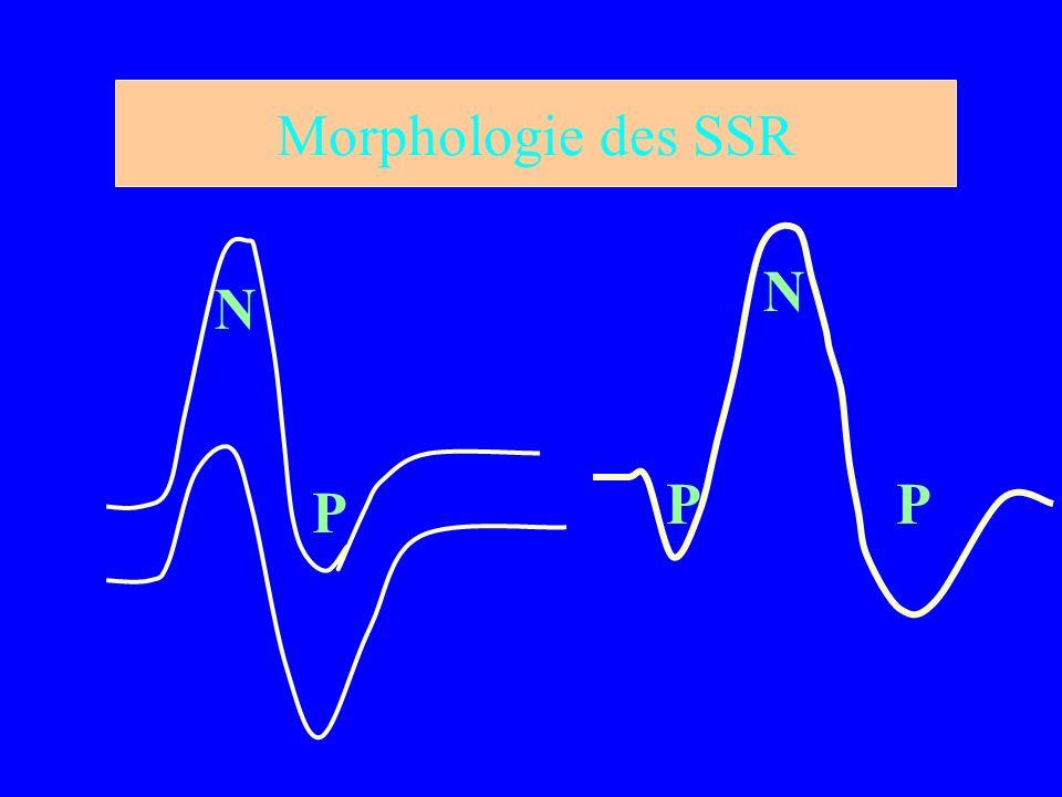 Morphologie des SSR N P P N P