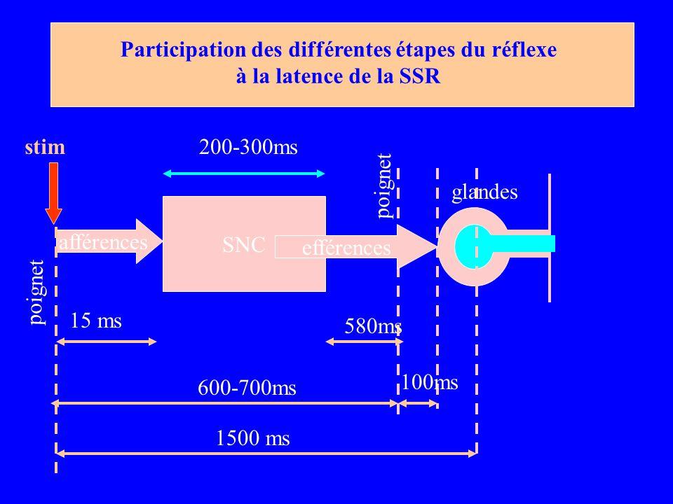 SNC afférences 1500 ms 600-700ms 15 ms 100ms 200-300ms 580ms Participation des différentes étapes du réflexe à la latence de la SSR poignet efférences