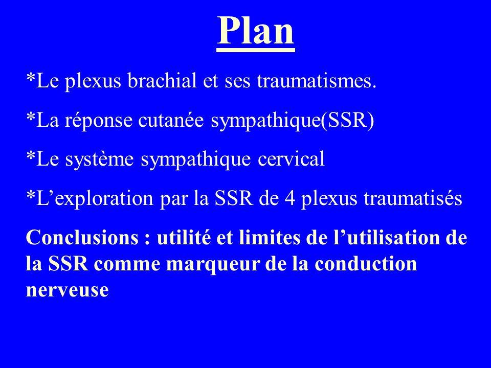 Plan *Le plexus brachial et ses traumatismes. *La réponse cutanée sympathique(SSR) *Le système sympathique cervical *Lexploration par la SSR de 4 plex