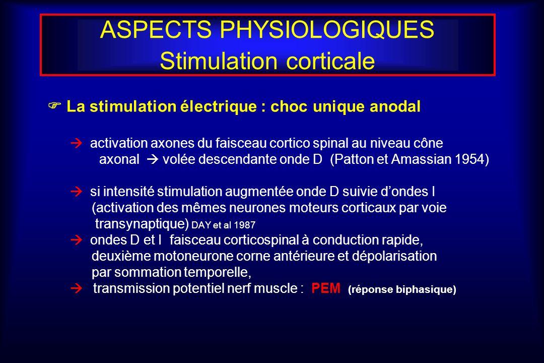 ASPECTS PHYSIOLOGIQUES Stimulation corticale La stimulation électrique : choc unique anodal activation axones du faisceau cortico spinal au niveau côn