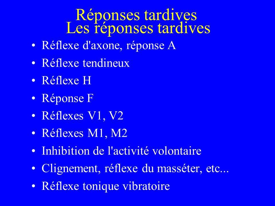 Les réponses tardives Réflexe d'axone, réponse A Réflexe tendineux Réflexe H Réponse F Réflexes V1, V2 Réflexes M1, M2 Inhibition de l'activité volont