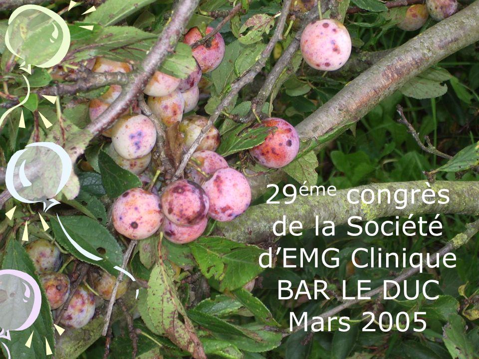 29 éme congrès de la Société dEMG Clinique BAR LE DUC Mars 2005